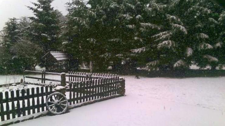 Śnieżny prima aprilis w Górach Izerskich