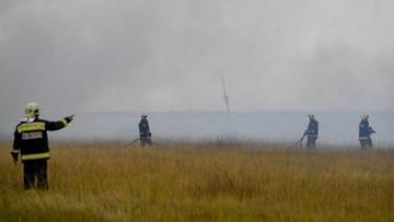 Pożar w Parku Narodowym Hortobagy na Węgrzech. Spłonęło 1000 hektarów