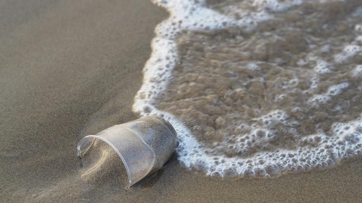 """3 lipca wchodzi """"Dyrektywa Plastikowa"""". Koniec z jednorazowymi naczyniami"""