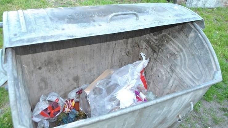 Zabił pięć szczeniaków i wrzucił je do kontenera na śmieci