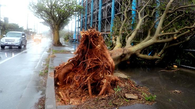 Tajfun Trami uderzył w Japonię. Dziesiątki rannych, ponad 1000 odwołanych lotów