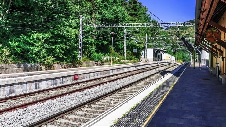 Holandia. Odwołują pociągi z powodu braku pracowników