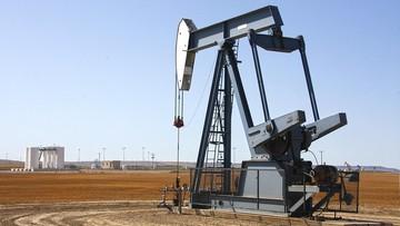 """Rosja i Arabia Saudyjska chcą """"ustabilizować rynek ropy"""". Eksperci: puste porozumienie"""