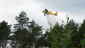 10 tys. zł za pomoc w ujęciu podpalacza. Płoną lasy w okolicach Węglińca