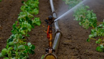 Ministerstwo środowiska: opłaty za pobór wody będą trzykrotnie niższe niż planowaliśmy