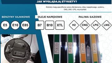 Od dziś na stacjach paliwa oznaczone nowymi etykietami