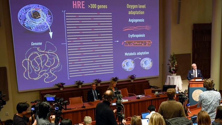 """Nobel za badania dotyczące """"tlenowych regulacji"""" na poziomie komórki"""