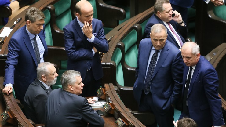 Schetyna: będzie projekt specustawy o Puszczy Białowieskiej
