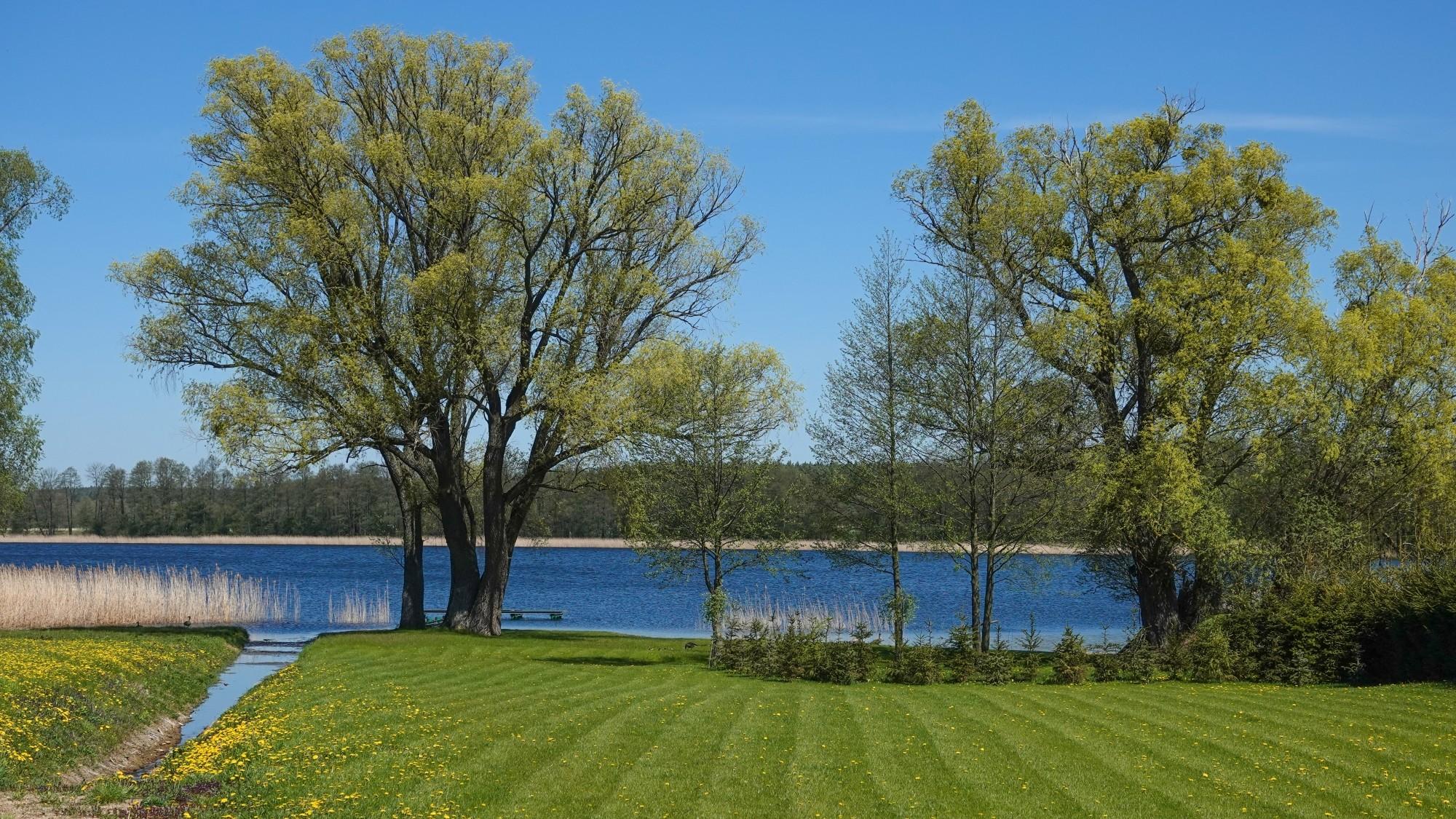 W maju jak w raju - zdjęcie 2