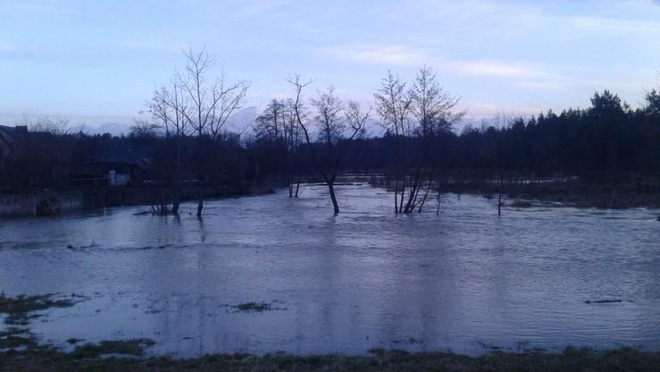 Podtopienia i powódź koło Biłgoraja (Lubelszczyzna). Wylała rzeka Biała Łada