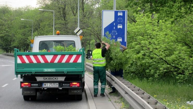 Warszawa robi porządki ze znakami. Odsłania, co zakryła przyroda