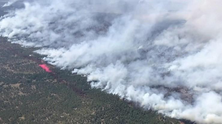 USA. Pożar wielkości Los Angeles. Zagraża tysiącom ludzi w Oregonie
