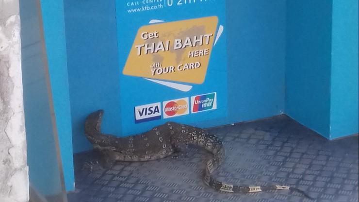 Nietypowy klient bankomatu