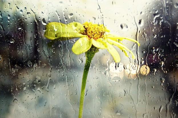 Duże zachmurzenie z opadami deszczu. Pogoda na niedzielę