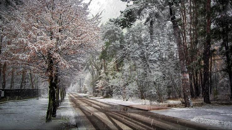 Deszcz, śnieg i rozpogodzenia. Prognoza na poniedziałek, 30 listopada