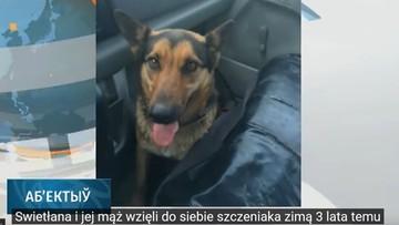 Pracownicy komunalni na oczach dziecka zastrzelili psa