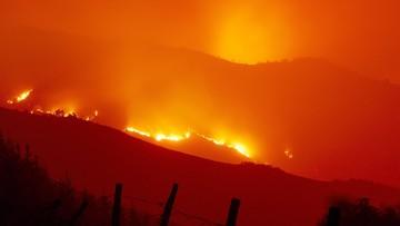 Policja: za pożarami w Hiszpanii i Portugalii stoją grupy przestępcze