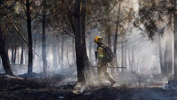 Pożary w Hiszpanii. Z żywiołem walczy 3 tys. strażaków