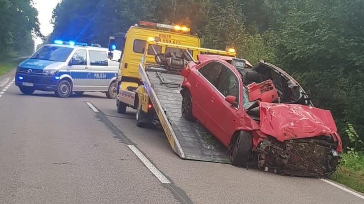 Ciechanów. Śmiertelny wypadek na drodze gminnej. Łoś wybiegł z lasu
