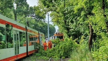 Po burzach w Łodzi trzeba zamknąć cmentarz na Dołach i kilka parków
