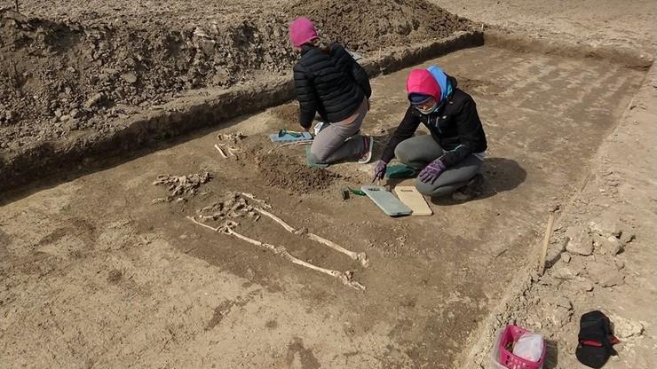 Podczas spaceru z psem odkrył... średniowieczne cmentarzysko