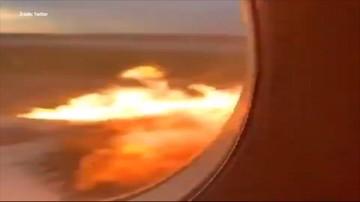 Krzyki pasażerów, panika, ogień i dym za oknem. Nagranie z wnętrza płonącego samolotu