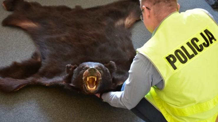 Chciał sprzedać skórę z niedźwiedzia. Grozi mu 5 lat więzienia