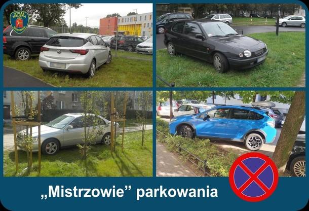 Stołeczna Straż Miejska ostrzega przed parkowaniem w niedozwolonych miejscach.