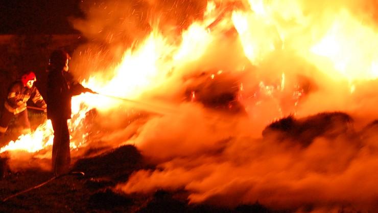 Ukraiński urzędnik: Polacy, członkowie organizacji Falanga, próbowali podpalić węgierski ośrodek