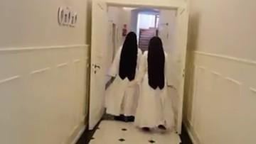 Filmik zakonnic z okazji Światowego Dnia Pingwinów podbija sieć. W tle szczytny cel