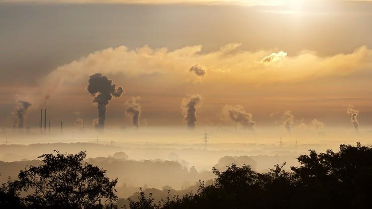 Trzy projekty uchwał antysmogowych dla Dolnego Śląska. Mogą zostać przyjęte w listopadzie