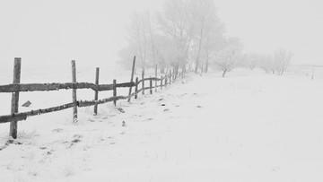 Pogoda na zimę. IMGW podał długoterminowe prognozy
