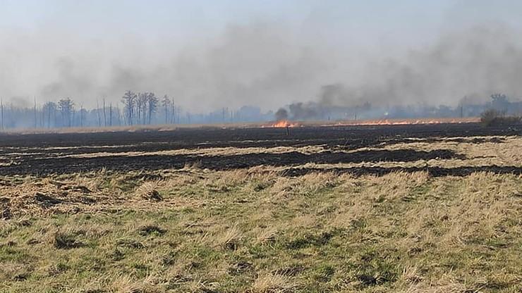 Płonie 46 ha ścierniska. W akcji śmigłowiec gaśniczy