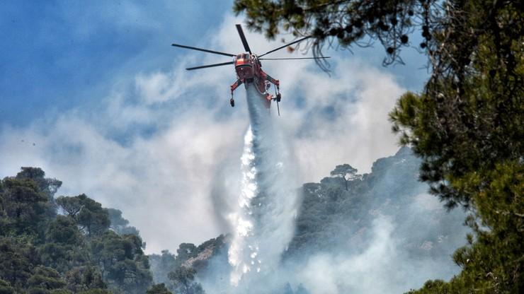Pożar w Grecji. Setki strażaków walczyło drugi dzień z ogniem