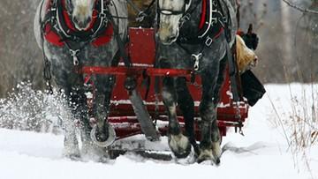 Poniosły konie, zderzyły się dwa powozy. Wielu rannych