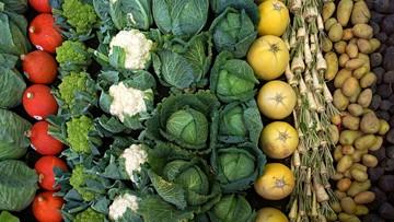 """Jarmuż najbardziej skażony pestycydami. W """"Brudnej Dwunastce"""" jeszcze m.in. jabłka, seler i szpinak"""