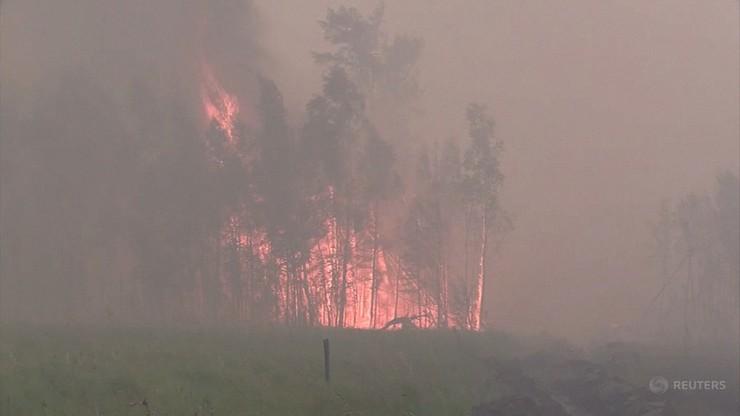 Rosja. Pożary lasów w Jakucji. 150 megaton dwutlenku węgla przedostało się do atmosfery