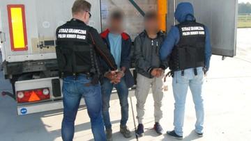 Nielegalni imigranci wjechali do Polski ukryci w ciężarówce. Zostali zatrzymani