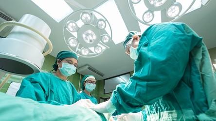 Szpitalne insekty są nosicielami bakterii opornych na antybiotyki