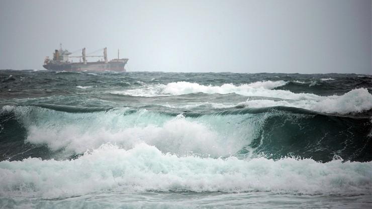 Statki z hiszpańskimi krowami od 2 miesięcy tułają się po morzu