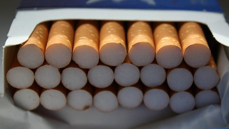 Grupa nielegalnie produkująca papierosy stanie przed sądem. Okradli Skarb Państwa na 121 mln zł