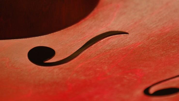 Dziewczynka zostawiła skrzypce w autobusie, a egzamin za tydzień. Mama prosi o pomoc