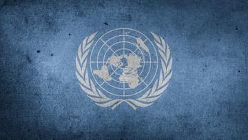 """Posiedzenie Rady Bezpieczeństwa ONZ ws. Krymu. """"Rosja nie ma czystych intencji"""""""