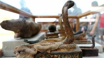 Egipt: niedaleko piramid w Gizie znaleziono mumie zwierząt. Zabalsamowane kobry, krokodyle i koty