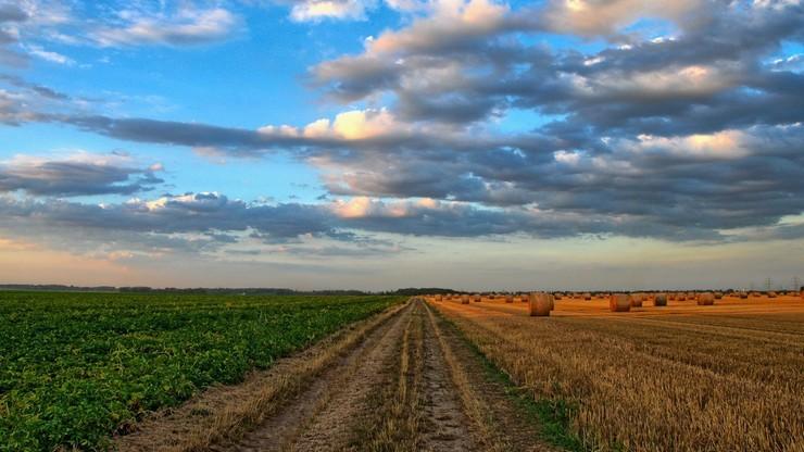 Polscy rolnicy nie mogą uprawiać swoich pól. Litwa rozważy złagodzenie obostrzeń