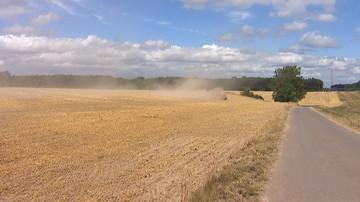 """Prawie 127 tys. gospodarstw poszkodowanych z powodu suszy. """"Straty oszacowano na ok. 875 mln zł"""""""