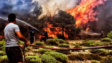 Prawie wszystkie pożary w Grecji są pod kontrolą. Strażacy walczą jeszcze z ogniem w pobliżu Aten