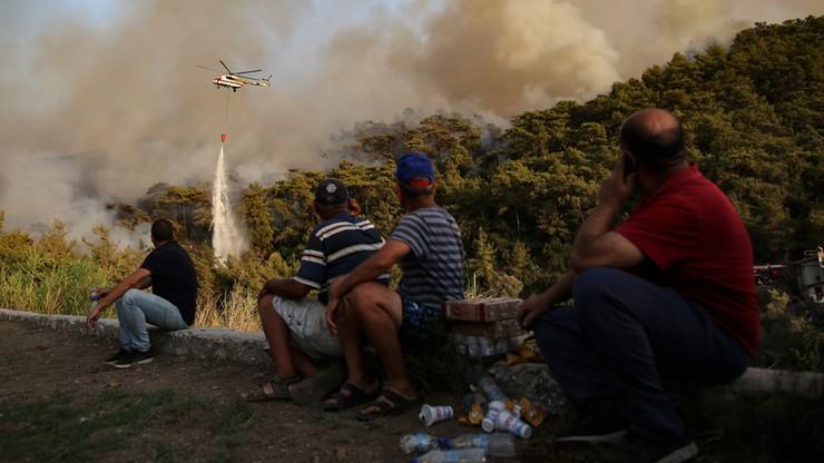 """Już ponad sto pożarów w Turcji. """"Płoną zwierzęta, wszystko spłonie"""""""