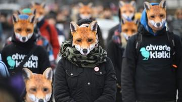 """""""Lisy"""" przed Sejmem. Protest przeciw hodowli zwierząt na futro"""