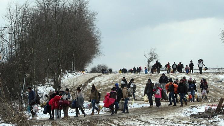 Węgry deklarują: jesteśmy gotowi postawić ogrodzenia na granicy z Rumunią